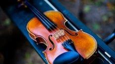 fiddle in case