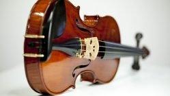 fiddle on side
